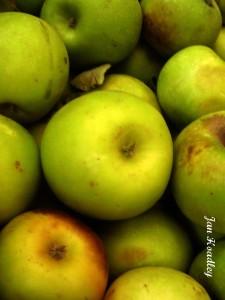 Arizona cider apples